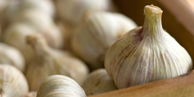 Garlic is known – correctly – for numerous health benefits